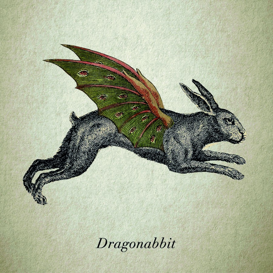 Dragonabbit
