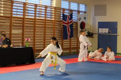 Íþróttafélag Reykjavíkur, karate