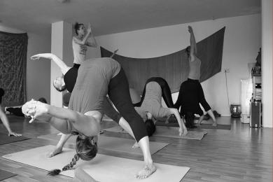 Yoga Shala, yoga